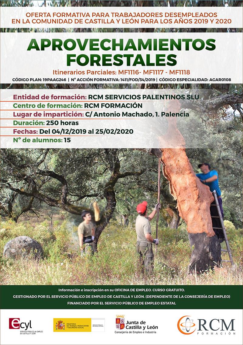 Curso de Aprovechamientos Forestales en Palencia